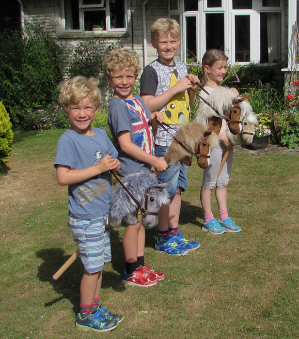 Kids of all ages with Hobby Horses