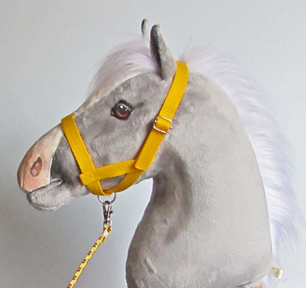 Yellow halter and lead rope