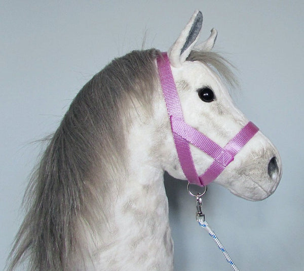 Pink halter and lead rope