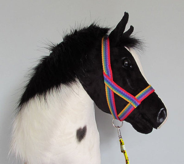 Rainbow halter and lead rope