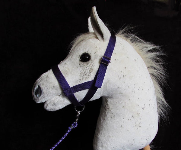 Purple halter and lead rope