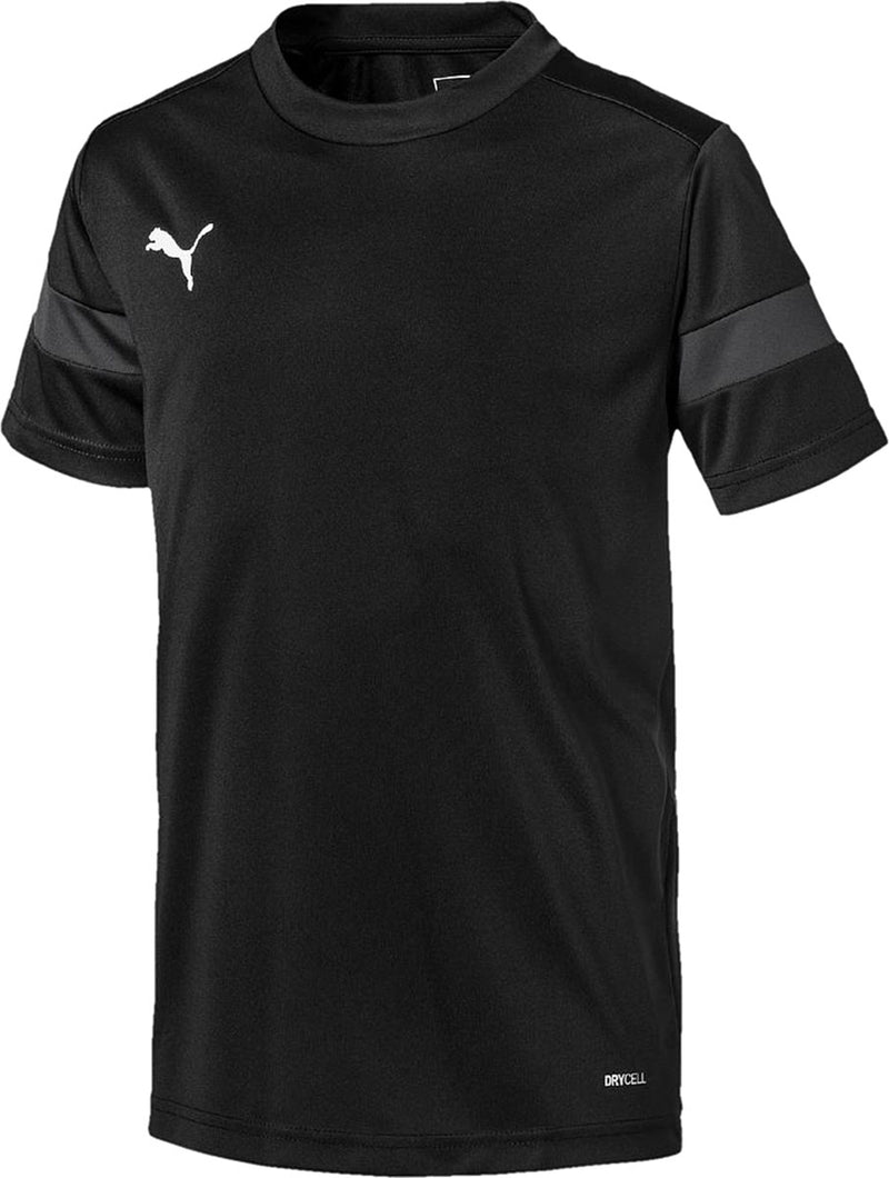Puma ftblPLAY Adult Training Shirt Asphalt/Black