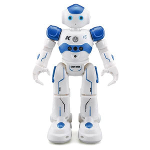 The Original Humanoid Robot Toy