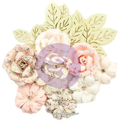 Prima - Poetic Rose - Flower - Enchanted