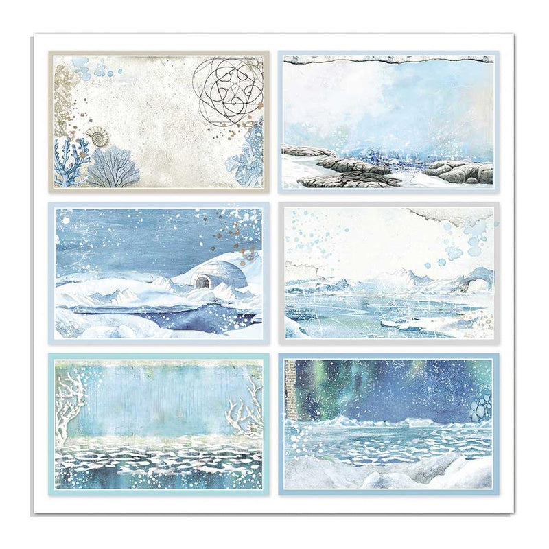 Stamperia - Arctic Antarctic - Cards  - 12 x 12""