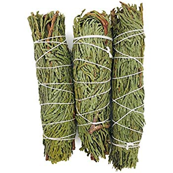 Cedar Smudge Bundle - 4""
