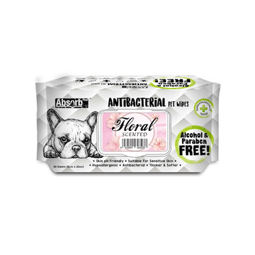Absorb Plus Antibacterial Pet Wipes Floral (Bundle of 3)