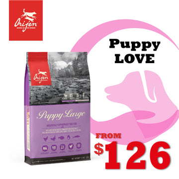 PuppyLOVE Exclusive: ORIJEN Large Breed Puppy Dry Dog Food