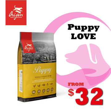 PuppyLOVE Exclusive: ORIJEN Puppy Dry Dog Food