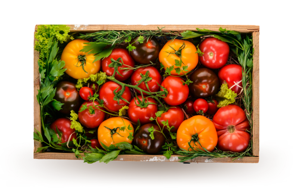 Organic Heirloom Tomato Box