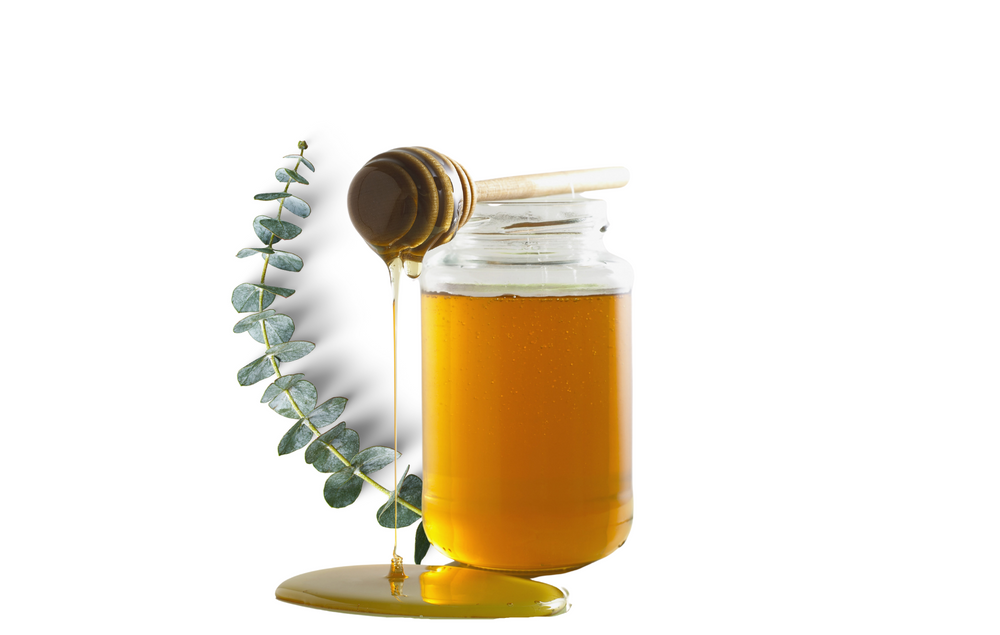 Local Eucalyptus Honey