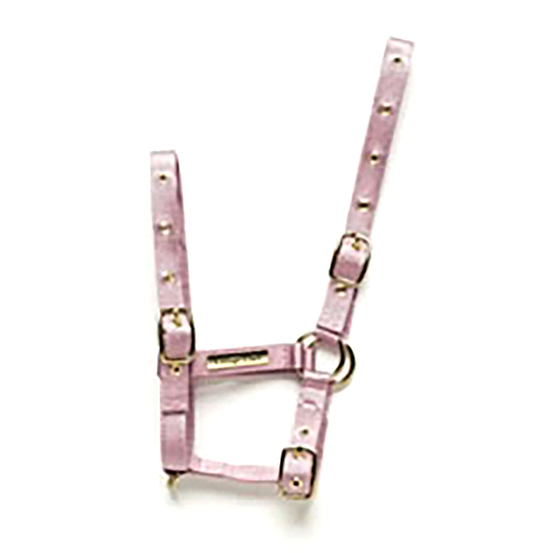 Cottage Craft Foal Headcollar Nylon Standard