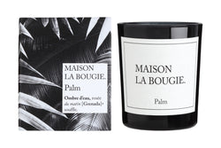 Candle Palm - Shop Home decor, Kitchenware, Fragrances, Scents, and more online!