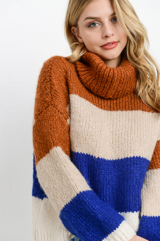 Turtleneck Colorblock Long Sleeves Sweater
