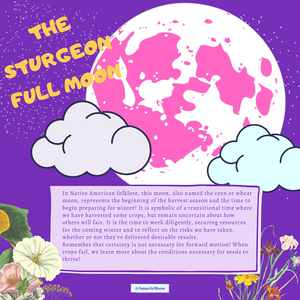 The Sturgeon Full Moon Infographic