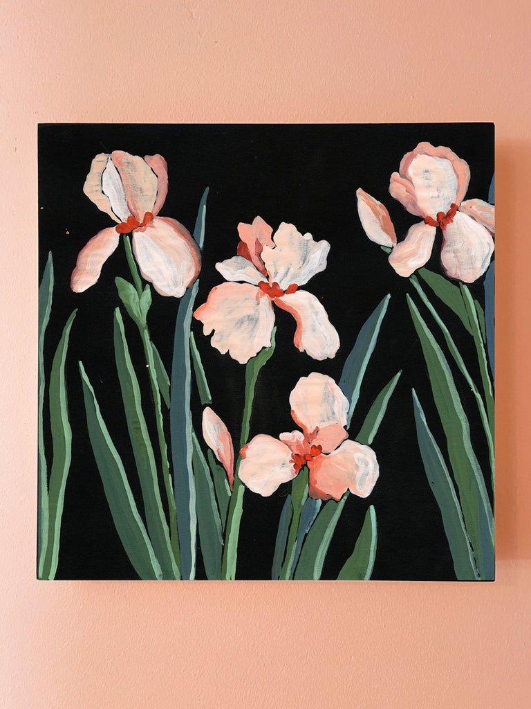 8x8 inch gouache painting of coral and white iris  with varied green leaves on black paper by Liz Langley on a pink wall.