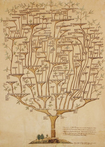 Folger Family Tree Lithograph