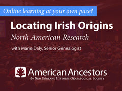 Online Learning: Locating Irish Origins, North American Research