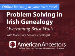 Online Learning: Problem Solving in Irish Genealogy