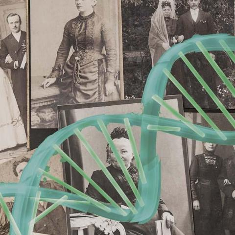 DNA in Genealogy: How Genetic Testing Can Enrich Your Family History