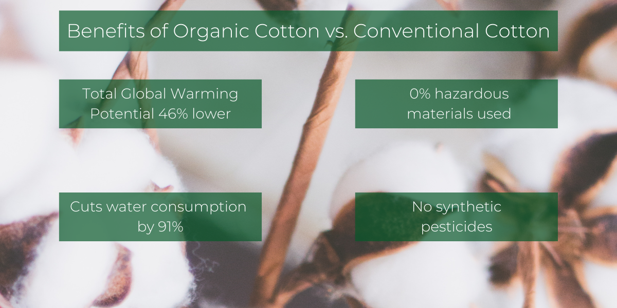 Organic cotton vs. conventional cotton