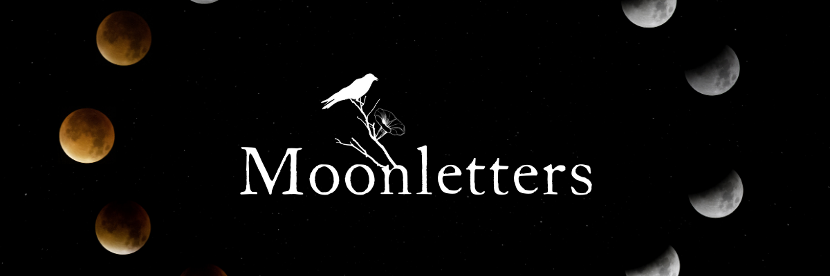 Likely Tale Moonletters Banner