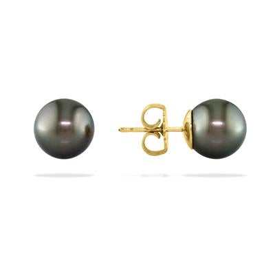 14K Yellow Gold Tahitian Pearl 8.5mm stud earrings