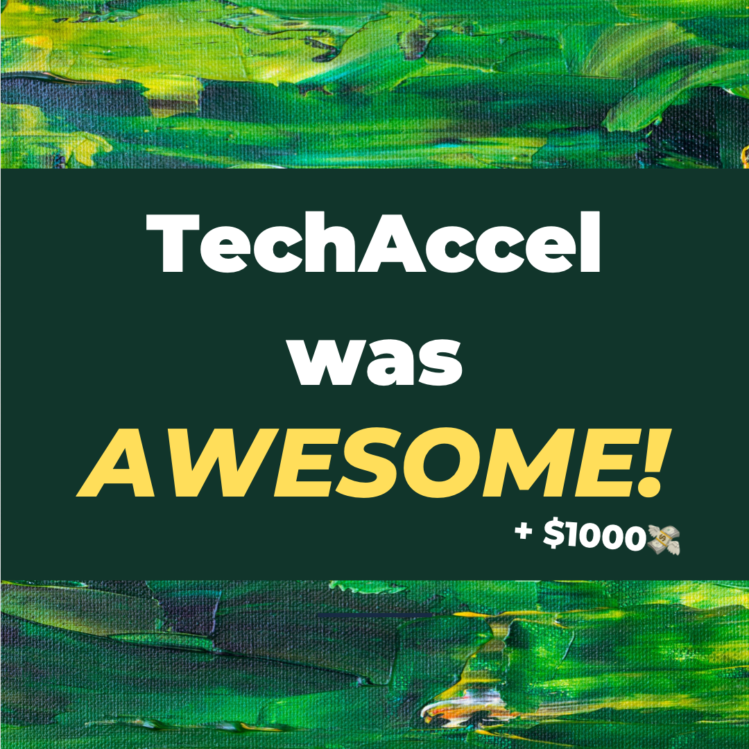 TechAccel was AWESOME!