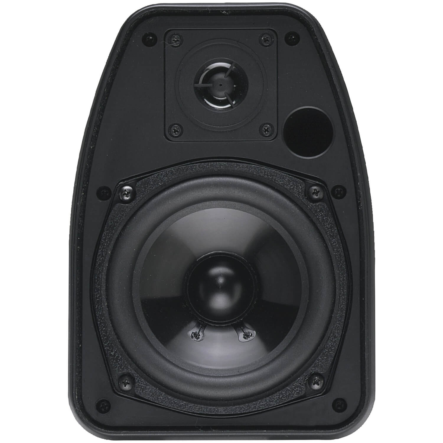 BIC America 125-Watt Indoor/Outdoor Speakers