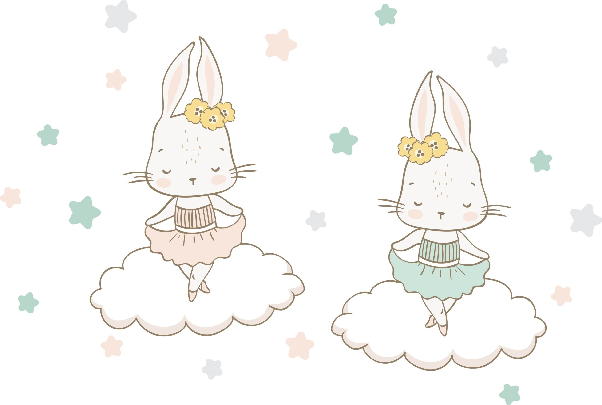 Bunny Ballerinas - Lilly and Bee