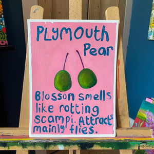Plymouth Pear #1