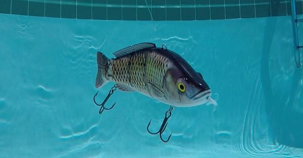 """Power-Driven Lure"" Review For Saltwater Anglers [Top 3 Pros & Cons]"