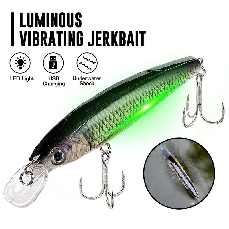 Luminous Vibrating  LED Minnow Fishing Lures for Bass Trout Freshwater Saltwater Electric Lures - OhCoolstule
