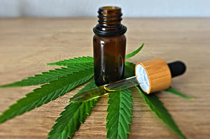 Medical CBD Oil Healing Benefits Fuels the Industry