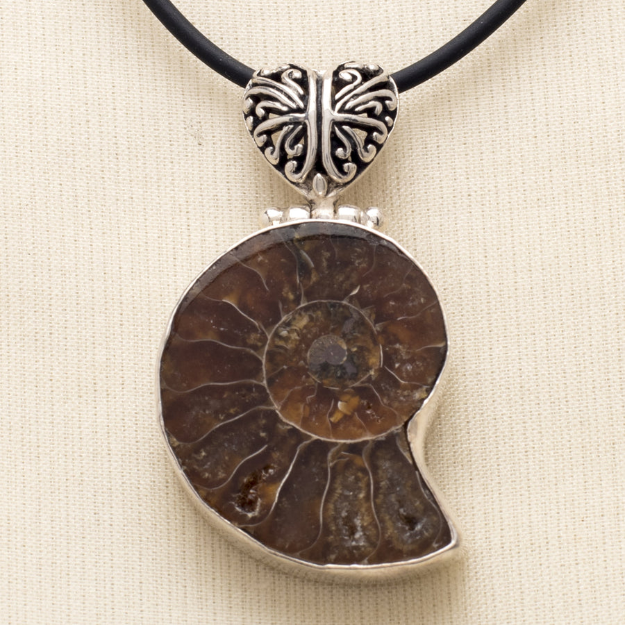 Ammonite Pendant with a Pierced Bail