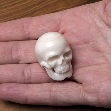 Bone Carving - Tiny Human Skull