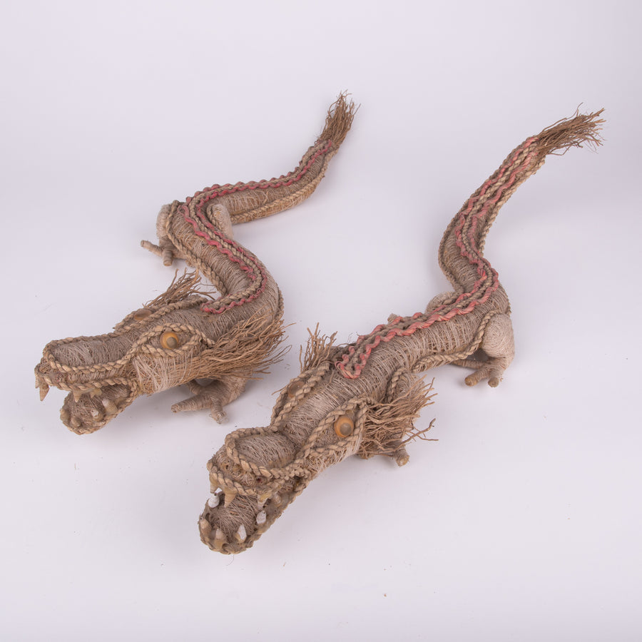 Alligators Wild & Antient with Sandalwood Tails