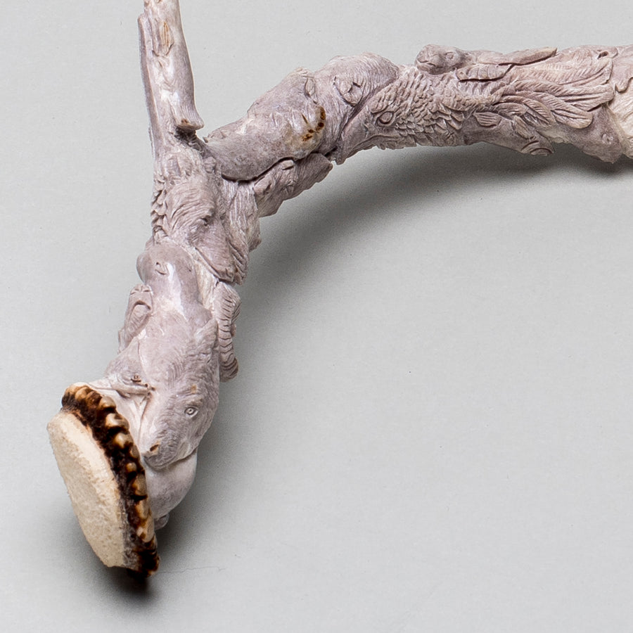 Extraordinary Carved Antler II