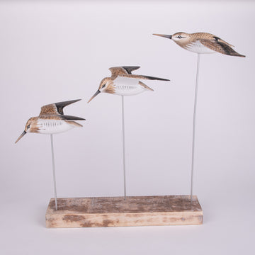 Hand Carved Shore Birds - Soaring Sandpipers
