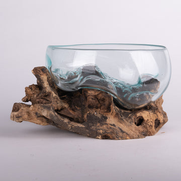 Melted Glass Bowl on Driftwood