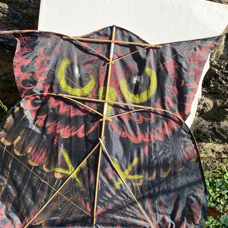 Backside of Kite open, ready to fly