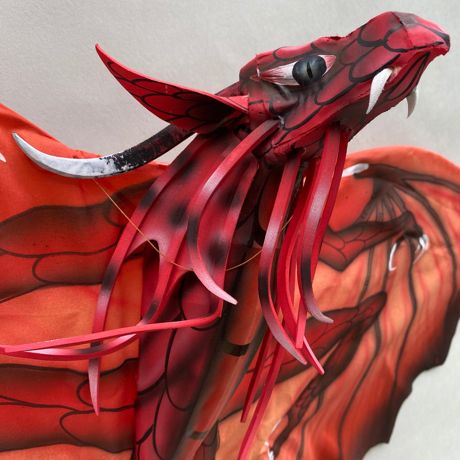 Red New Dragon Kite