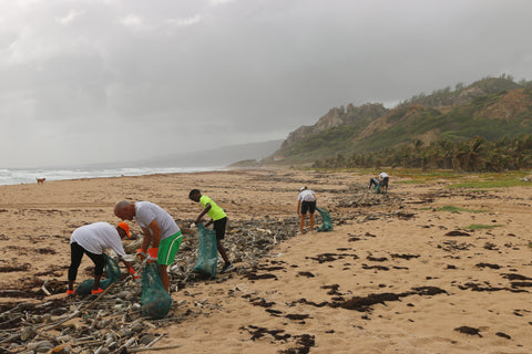 image of volunteers picking up plastic on the beach
