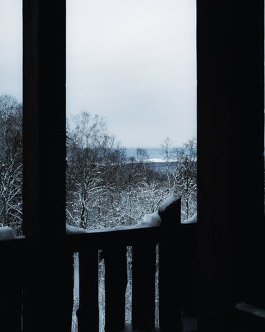 Image of a porch railing looking out unto icy winter trees