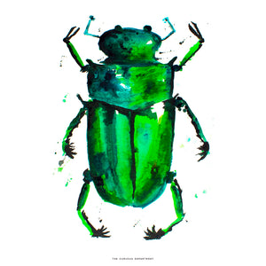BEETLE IN THE RAIN: art print