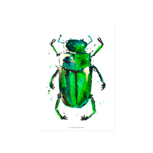 BEETLE IN THE RAIN: gold print