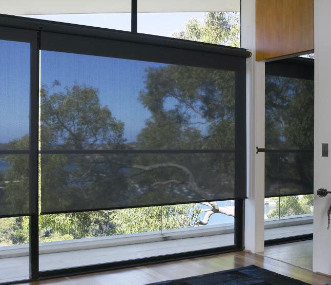 black Elite roller shades installed on a large window looking out on to sun and trees.