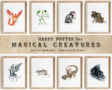 Load image into Gallery viewer, Harry Potter Magical Creatures Wall Art | Vol.2