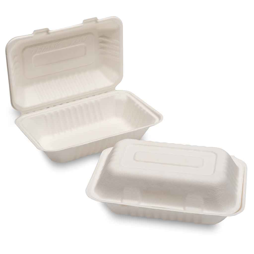 "Green Planet Bagasse F+C Box (250X155X60mm/10X6X2.5"") Medium, White 