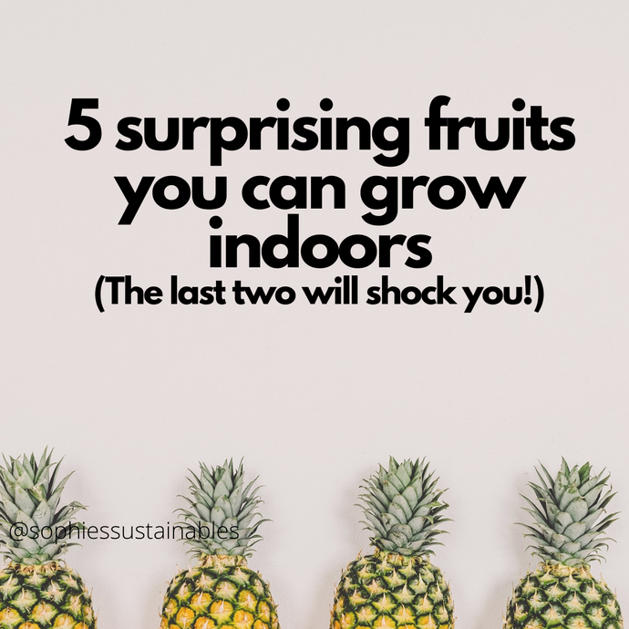 5 Surprising Fruits You Can Grow Indoors (The Last Two Will Shock You!)